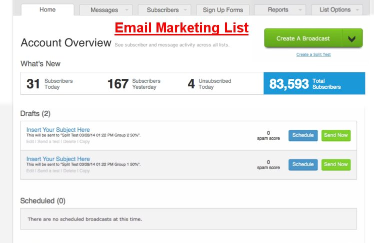Optimizing Your Email List Building